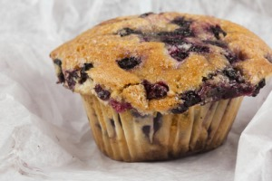blueberry-muffin-jm-dt